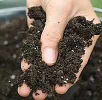 welke grondsoort heeft uw tuin