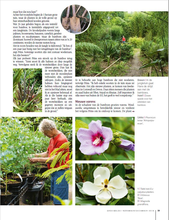 reportage groei en bloei De Groene Prins tuinieren