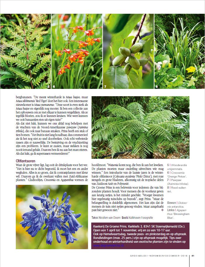 reportage groei en bloei De Groene Prins exotische planten