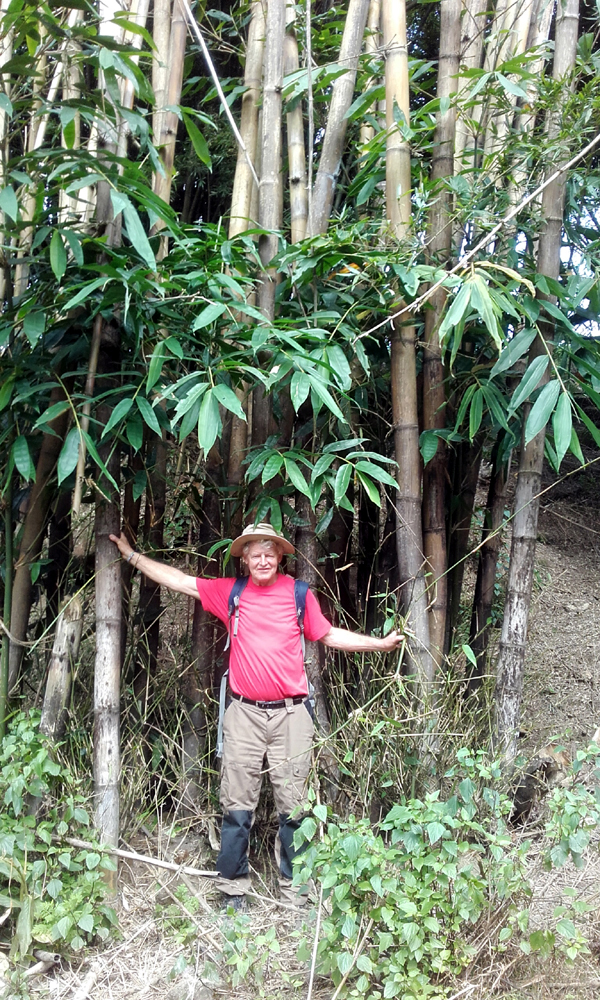 Hans Prins op plantenjacht in Noord Vietnam