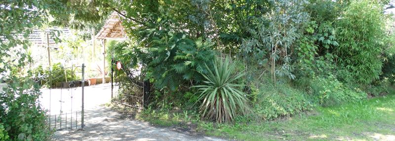 Naar kwekerij en botanische tuin De Groene Prins
