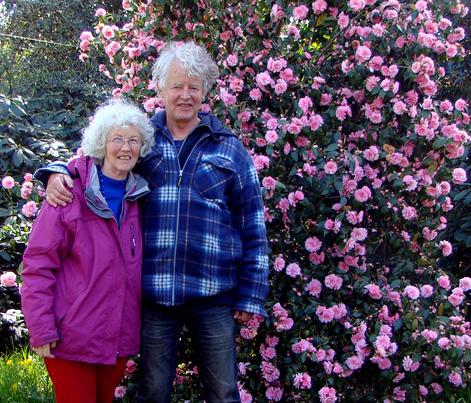 Camellia-Spring-Festival DeGroenePrins