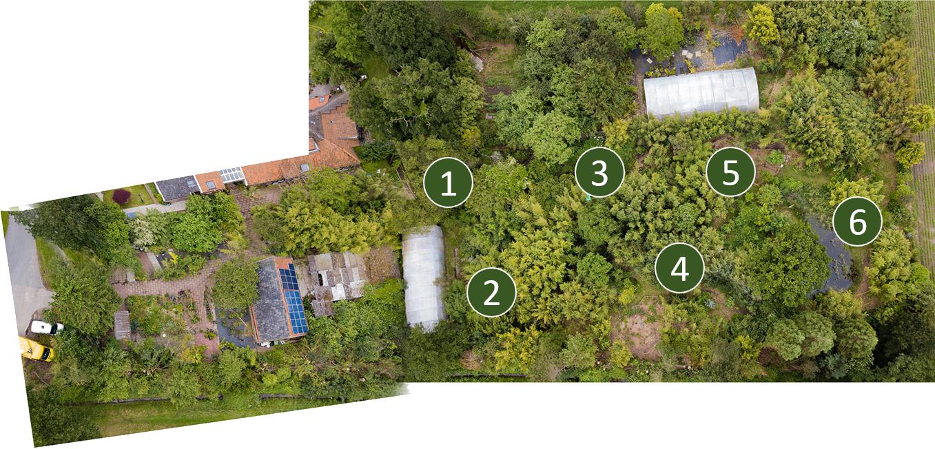 plattegrond Botanische tuin en Kwekerij De Groene Prins